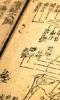 Gondolatok a Hagyományos Kínai Orvoslásról
